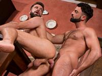 Spanish Countryside Raging Stallion