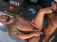 Shake and Shudder Raging Stallion