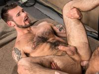 Deliver a Pounding Raging Stallion
