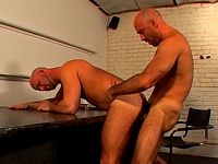 Hard Ass Pounding Phoenixxx