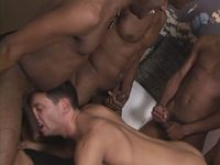 Four Black Dicks Mega Gay Porn