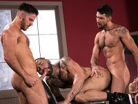 Where to Go Raging Stallion