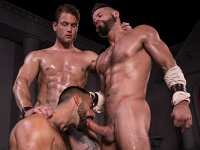 Roman Baths Raging Stallion