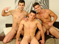 Brunette Trio William Higgins