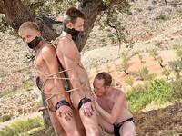 Captive Cocks Boynapped