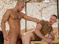 Yes Sergeant Falcon Studios