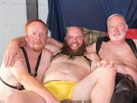 An Orgy Bear Films