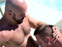 Carlo Cox and Marc Angelo Bear Films