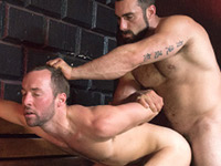Pound His Pup Dominic Pacifico