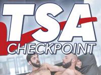 TSA Checkpoint Raging Stallion