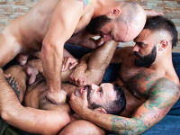 Hunky Tourists Raging Stallion