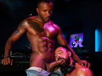 DJ in the Booth Raging Stallion