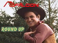 Round Up Falcon Studios