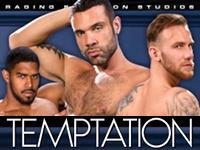 Temptation Raging Stallion