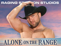 Alone on the Range Raging Stallion