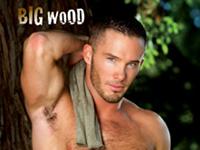 Big Wood Falcon Studios