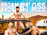 Haulin Ass Raging Stallion