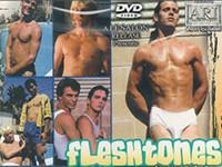 Fleshtones Gay Empire