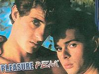 Pleasure Peak Gay Empire