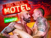 No Tell Motel Raging Stallion