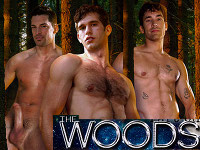 The Woods AEBN