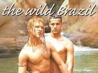 The Wild Brazil Gay Empire