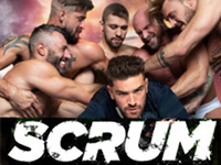 Scrum Raging Stallion