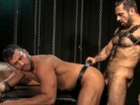 Animus 1 from Raging Stallion