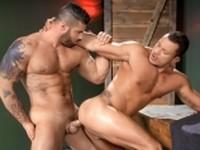 Throb Alex and Angelo Raging Stallion