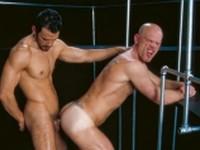 PleXus Lance and Tony Raging Stallion