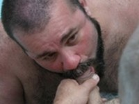 Cajun Bear and Wayne Daniels Bear Films
