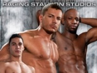 Steamworks Raging Stallion