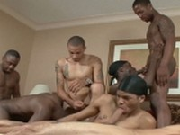 Angel Boi Da Bod Dynasty King Dingo Phat Daddy at Thug Orgy