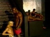 Andre Bolla 2 at Thug Orgy