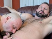 Davie and Cooper Ext Bear Films