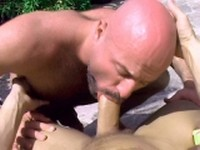 Bald Gay Bear Gives Oral Gay Bears Porno