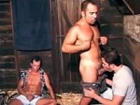 Gay Barn Boys Group Sex Gay Group Sex Videos