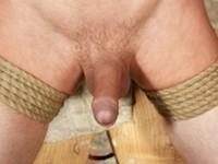 Big Dicked Bound Boy Reece 2 Boynapped
