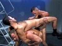 Lewd Developments Trio Raging Stallion